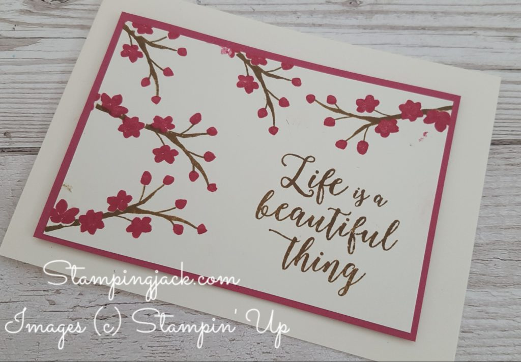 Stampin Up Colourful Seasons